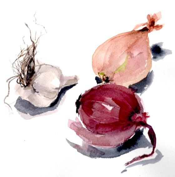 garlic, shallot, onion