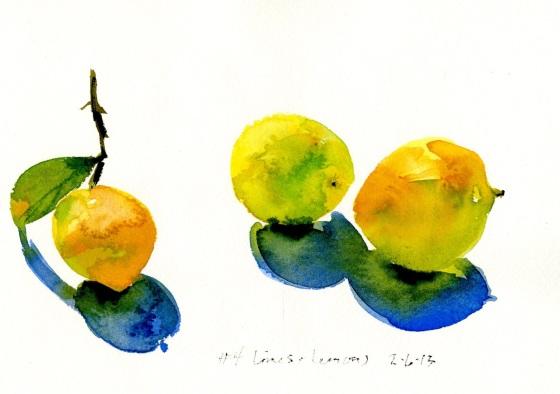 sally limes 1020