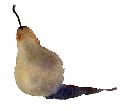 Pear 1 copy