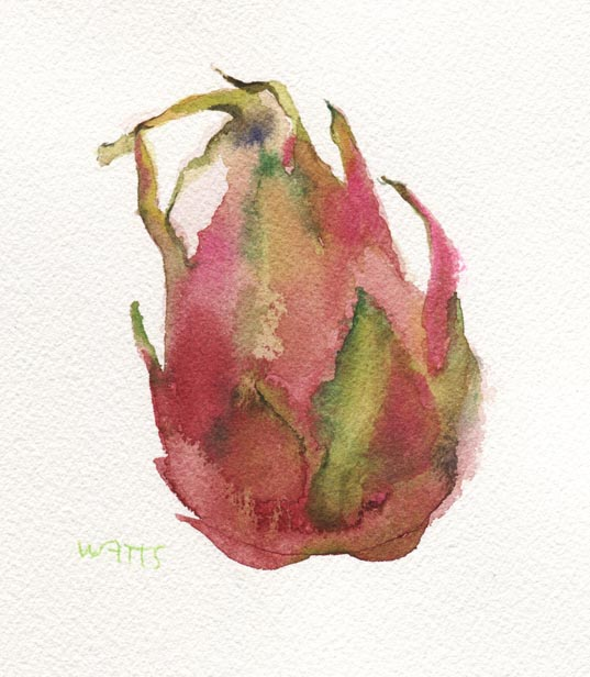 dragon fruit copy
